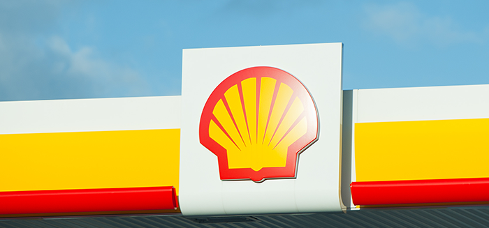 How much cash does shell have