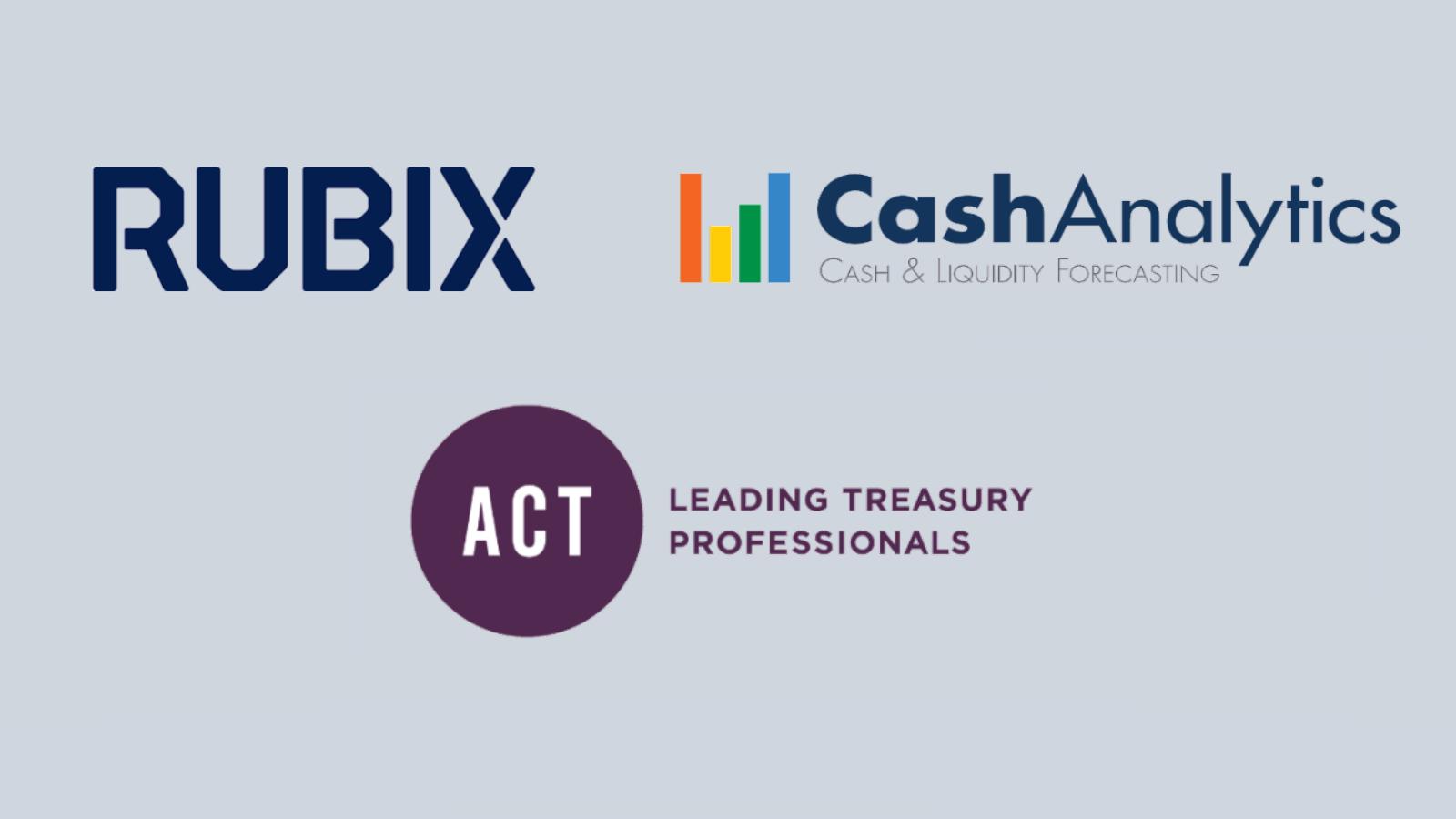 CashAnalytics corporate case study - RUBIX